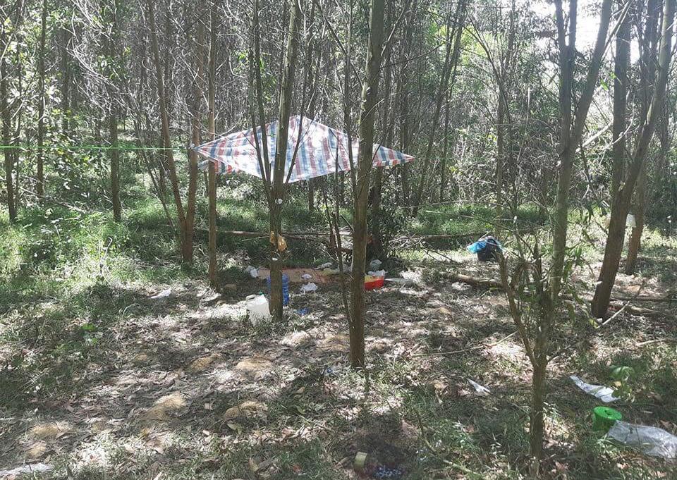 Khu rừng nơi xảy ra sự việc
