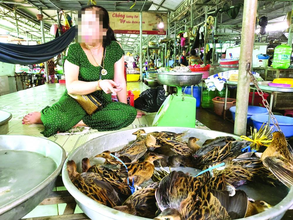 Bà U. ra giá bán chim cúm núm  350.000 đồng/kg