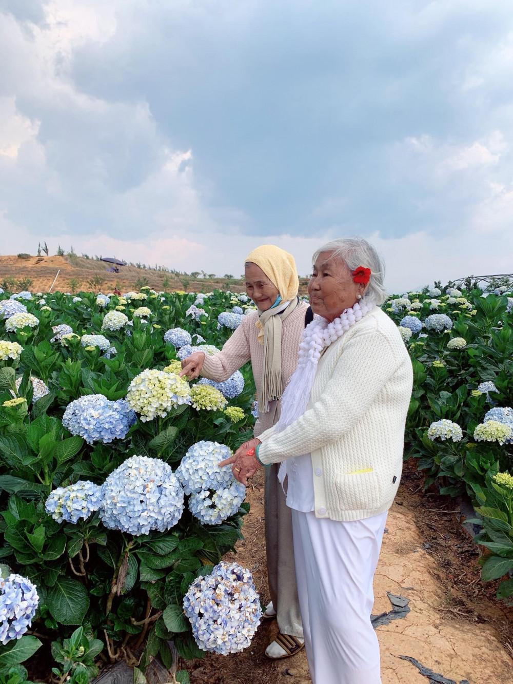 Bộ ảnh hai cụ bà đắt tay nhau đi du lịch Đà Lạt gây sốt cộng đồng mạng vì quá đáng yêu. Ảnh: Internet