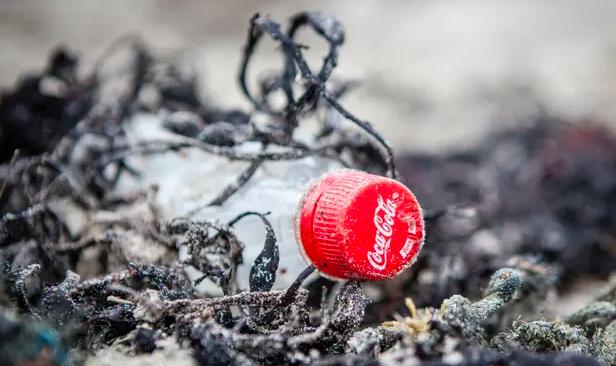Chai Coca-Cola trên bãi biển ở Mull, Scotland. Công ty đã bị chỉ trích vì nói rằng họ sẽ không từ bỏ nhựa sử dụng một lần. Ảnh: Will Rose / Greenpeace