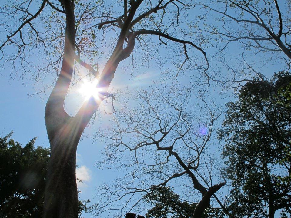 Nhân duyên là giáo lý bao trùm lên toàn bộ vũ trụ và nhân sinh quan của con người, theo quan điểm Phật giáo