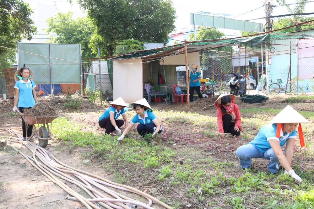 Mô hình cải tạo điểm đen về rác thành vườn rau của Hội LHPN phường Cát Lái