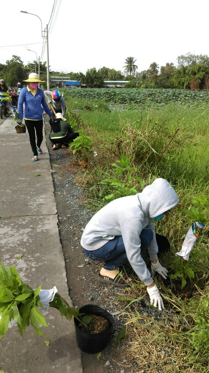 Nhờ những hành động thiết thực của hội viên, phụ nữ thành phố nhiều bãi rác hoang, điểm đen về rác đã trở nên quang đãng, sạch đẹp.