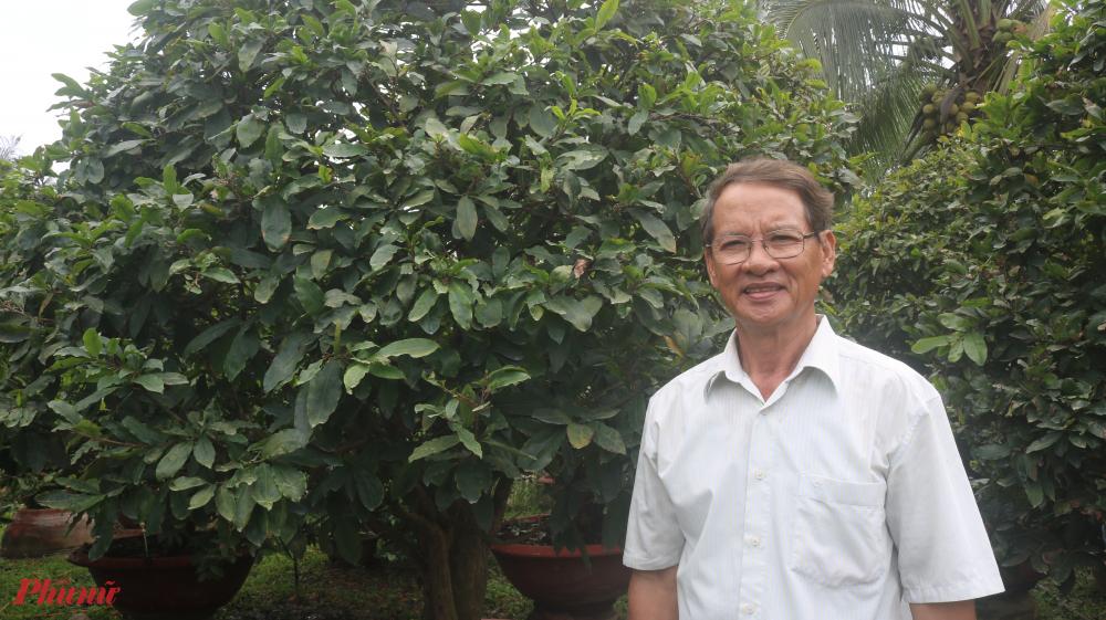 Ông Tiêu Hùng Minh - một trong những người trồng mai nổi tiếng ở làng mai Phước Định.