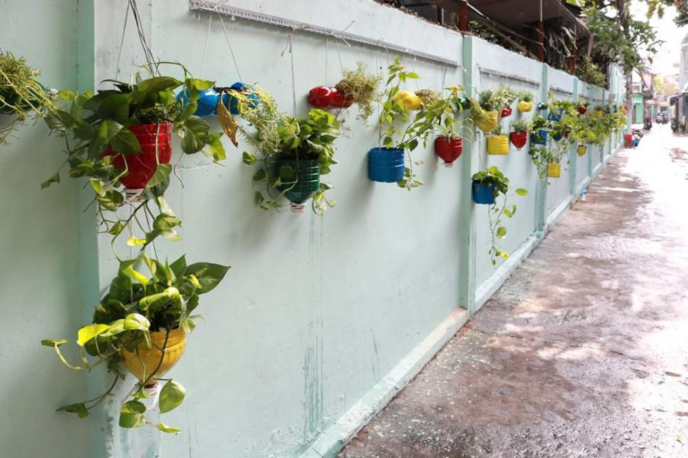 Hội LHPN quận Gò Vấp làm đẹp cho các bức tường bằng chậu cây xanh
