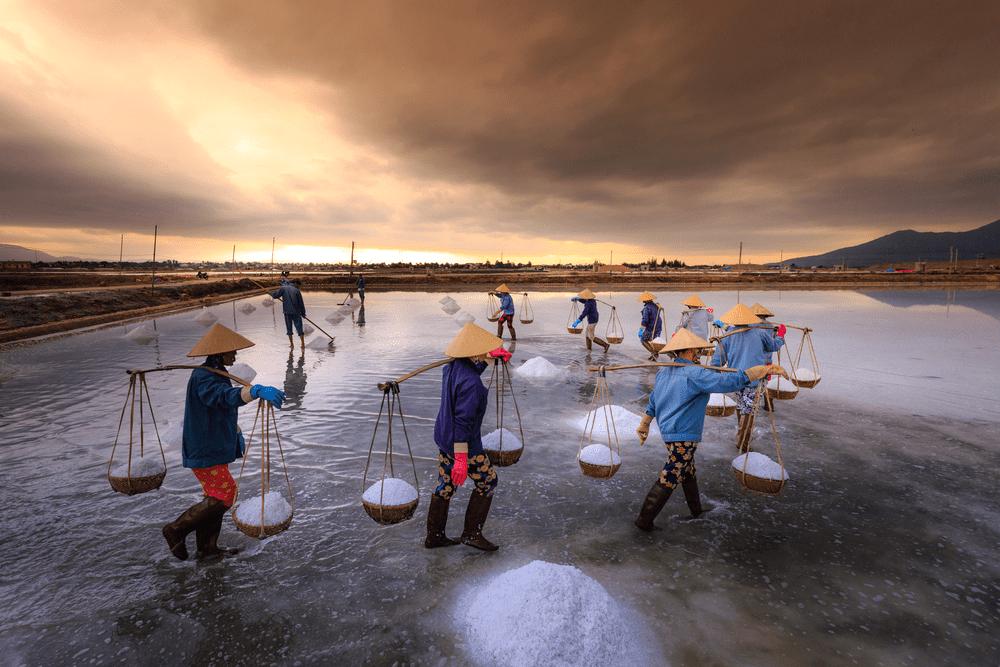 Diêm dân Ninh Thuận. Ảnh Internet
