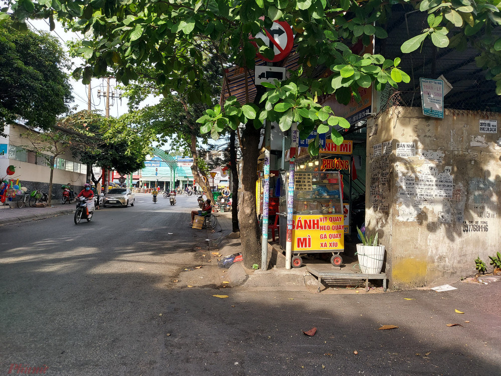 Dưới tán cây bàng là biển báo cấm rẽ phải và tên đường Quang Trung – Lê Thánh Tôn.