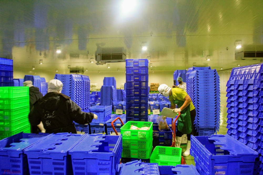 Công nhân đang trong quá trình phân phối hàng đến các hệ thống cửa hàng của chuỗi Bách Hoá Xanh.
