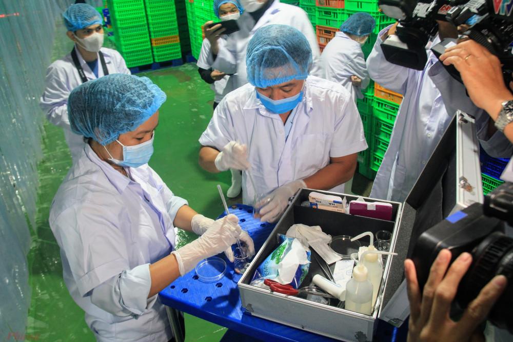 Trong quá trình kiểm tra kho lanh, Ban ATTP đã tiến hành lấy mẫu thịt heo test nhanh