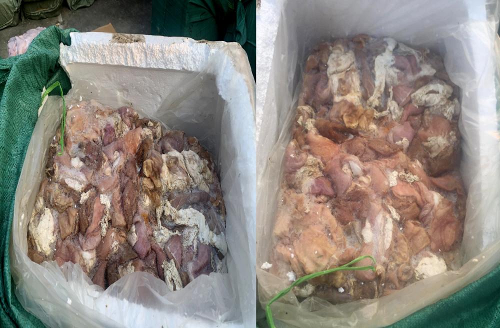 Số thịt heo, nội tạng động vật bốc mùi được đưa đi tiêu hủy