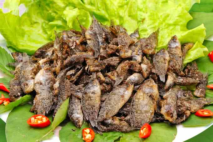 Cá rô đồng non chiên giòn là món ăn dễ gây nghiện khi đã có dịp thưởng thức