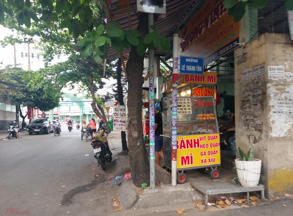 Cây bàng đã được mé nhánh, người dân dễ dàng nhìn thấy bảng tên đường Lê Thánh Tôn.