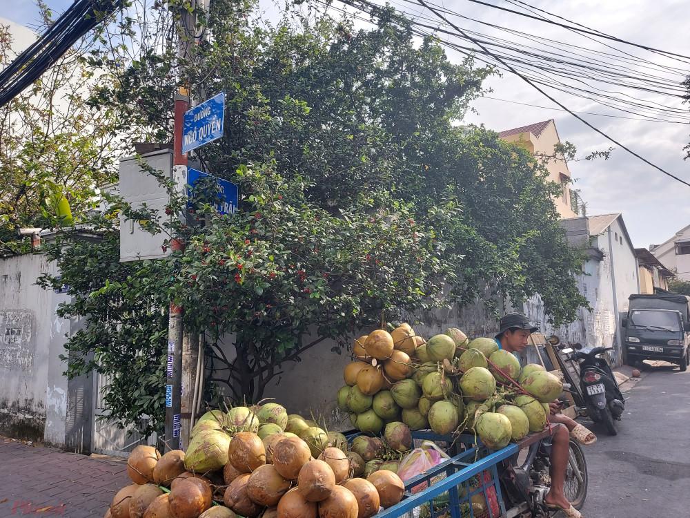 Bảng tên đường ở giao lộ Ngô Quyền - Nguyễn Trãi bị khuất trong bụi cây.