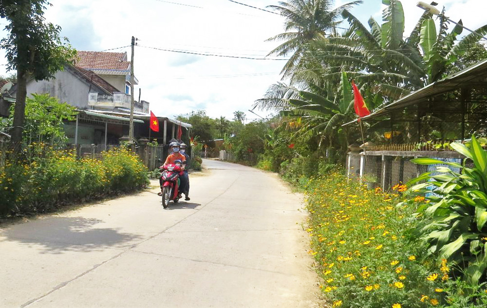 """Dọc theo đường nông thôn ở H.Đồng Xuân, tỉnh Phú Yên, nhiều nhà trồng hoa """"làm đẹp"""" đường bê tông chuẩn bị đón tết"""