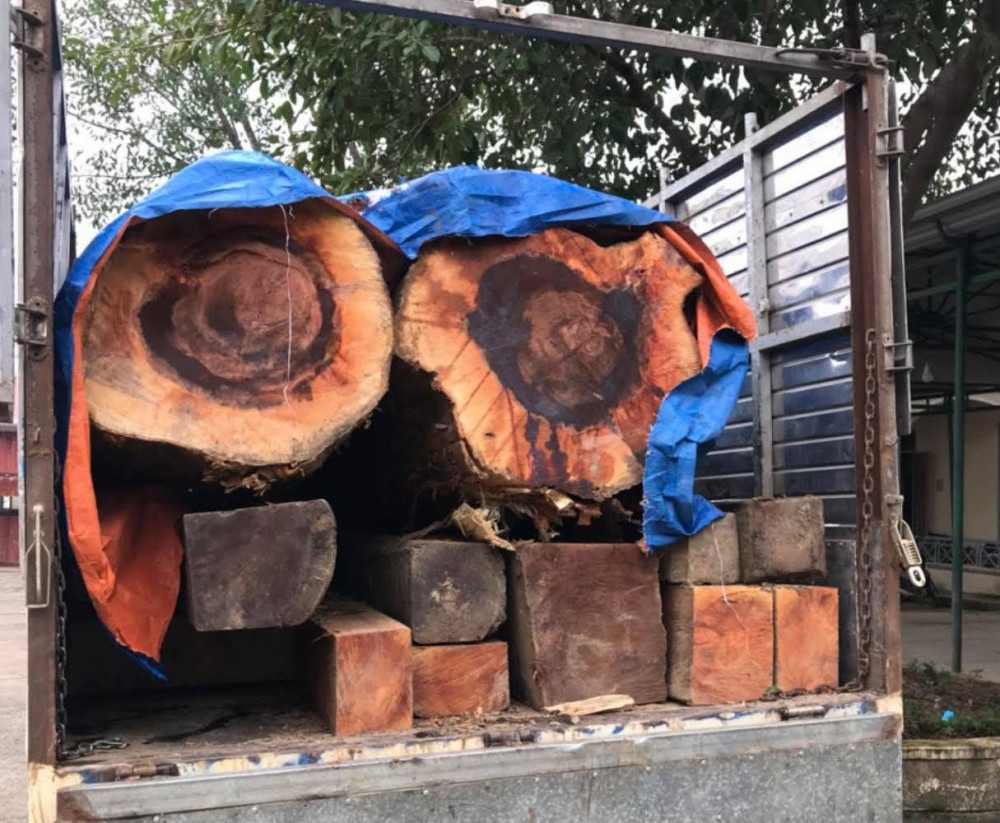 Công an tạm giữ toàn bộ số tang vật và phương tiện vận chuyển gỗ lậu.