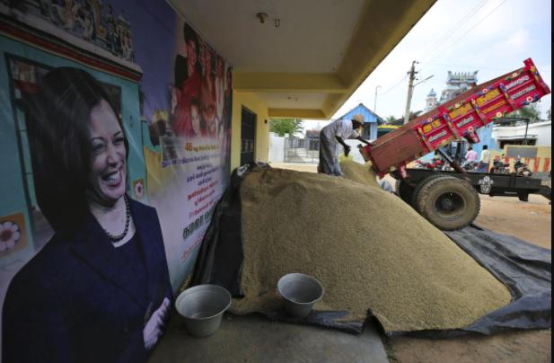"""""""Trong bốn năm tới, nếu cô ấy ủng hộ Ấn Độ, cô ấy sẽ là tổng thống,"""" G Manikandan, 40 tuổi, người đã theo dõi cô ấy về mặt chính trị và có cửa hàng tự hào trưng bày lịch treo tường với hình ảnh của Biden và Harris."""