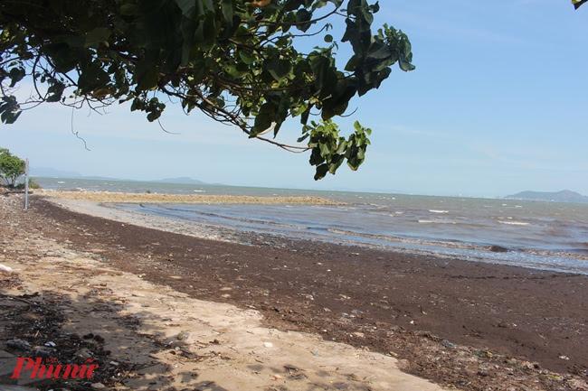 Biển Cần Giờ là bãi biển cát đen duy nhất của Việt Nam.