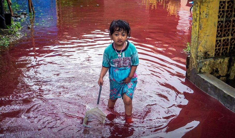 Một đứa trẻ tại làng Jenggot đang bước đi trong dòng nước lụt màu đỏ thẫm