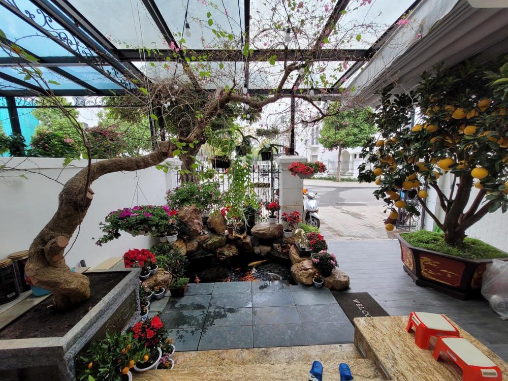 Nam ca sĩ cho biết khu vườn vừa được trang trí trở lại để đón Tết. Gia đình phía vợ vừa cho cây bưởi vàng.