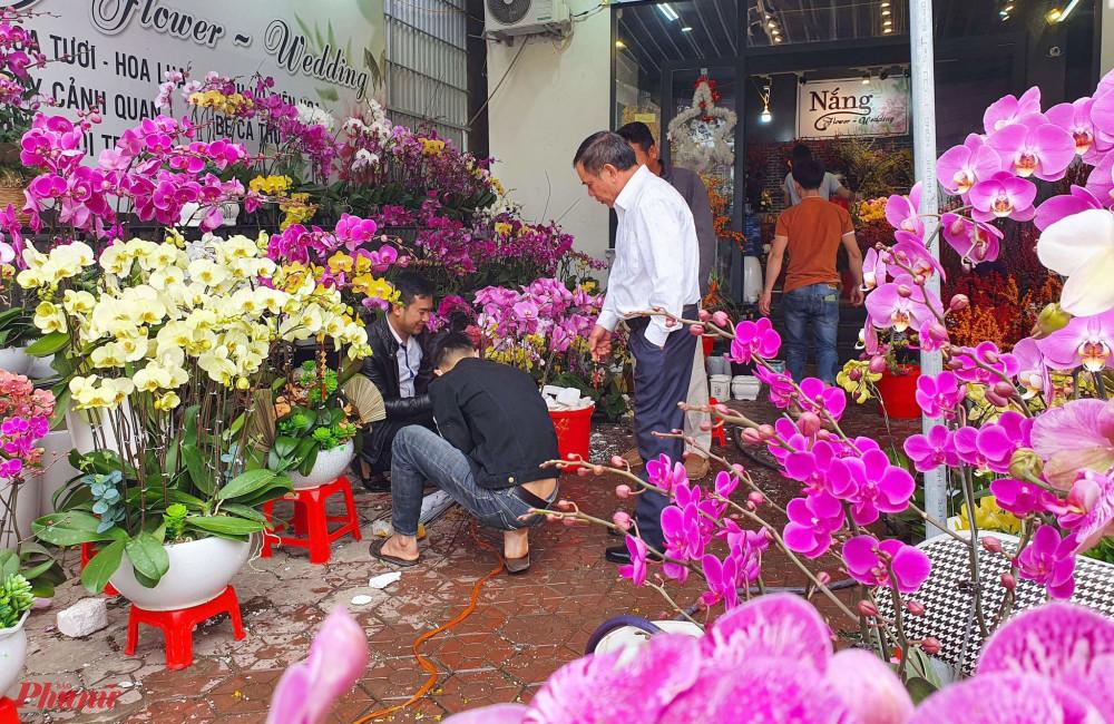 Hoa lan vốn được ưa chuộng những năm gần đây nay cũng rơi cảnh ế ẩm