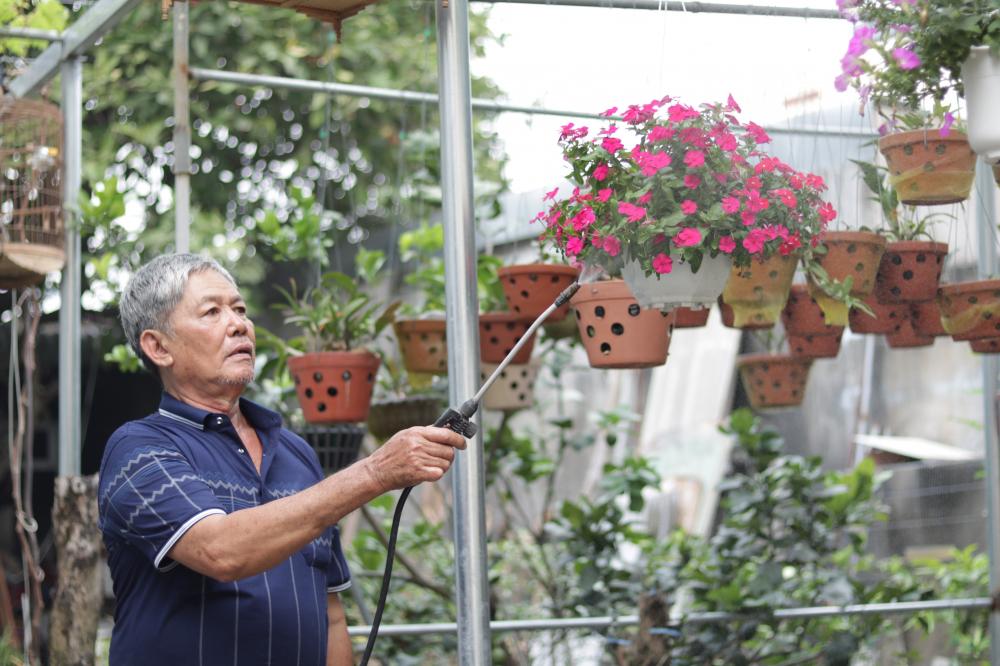 Vợ chồng bà Hoa cùng chăm vườn rau và những chậu hoa để tạo hương sắc Xuân cho xóm trọ.