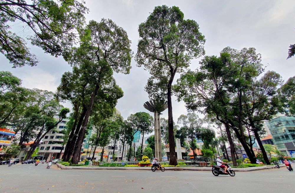 Khung cảnh thanh bình tại khu vực hồ Con Rùa, nơi giao nhau giữa các đường Phạm Ngọc Thạch - Trần Cao Vân - Võ Văn Tần