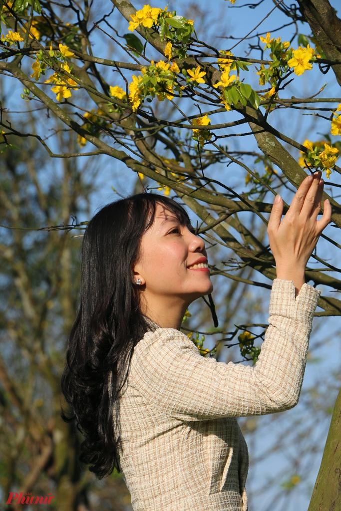 vườn hoàng mai nở trước Kinh thành Huế khoe sắc khiến người dân vô cùng thích thú.