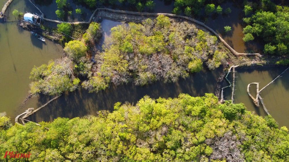 """Tuy nhiên, thời điểm hiện tại, du khách đến với Rú Chá vẫn được chiêm ngưỡng khung cảnh hoang sơ yên bình, được ung dung tản bộ chiêm ngưỡng và """"check in"""" những nét đẹp riêng có nơi khu rừng ngập mặn này"""
