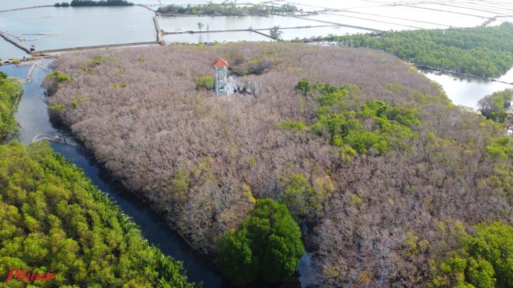 Tháp canh Rú Chá, cũng là địa điểm du khách chiêm ngưỡng toàn cảnh Rú Chá và khung cảnh vùng đầm phá Tam Giang
