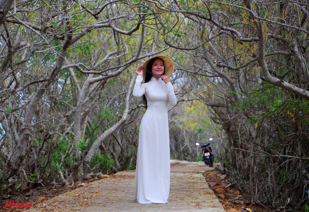 Rừng Rú Chá, thôn Thuận Hòa B, xã Hương Phong, Thừa Thiên – Huế, là một trong những khu rừng ngập mặn nguyên sinh quý hiếm còn lại trên phá Tam Giang