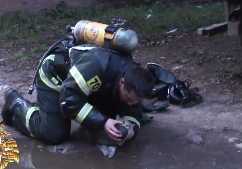 Hình ảnh người lính cứu hỏa nỗ lực cứu mèo con bị ngạt ở Tver. Ảnh cắt từ clip