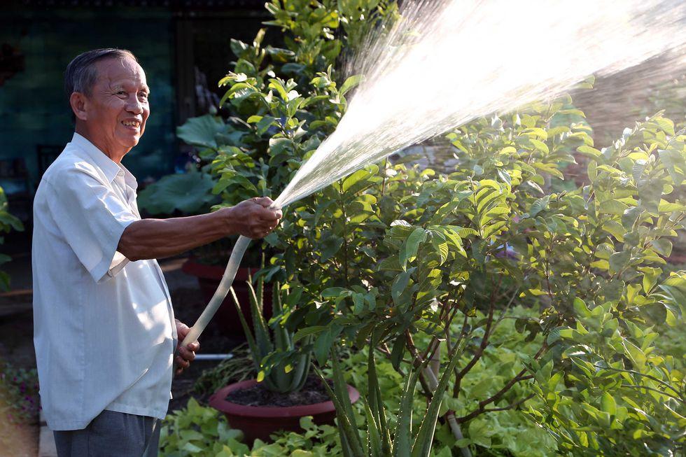 Nguyên Phó Thủ tướng Trương Vĩnh Trọng tưới rau làm vườn khi nghỉ hưu (ảnh chụp tháng 12/2016) - Ảnh: TNO