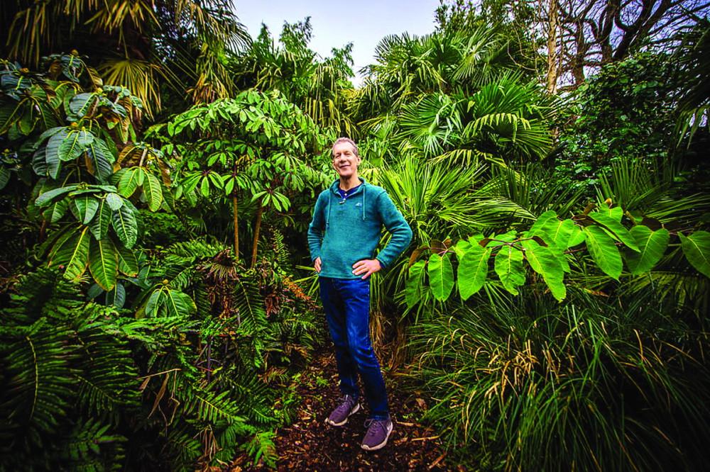 Ông Olpin trong khu rừng đặc biệt của mình - Ảnh: DAILY MAIL