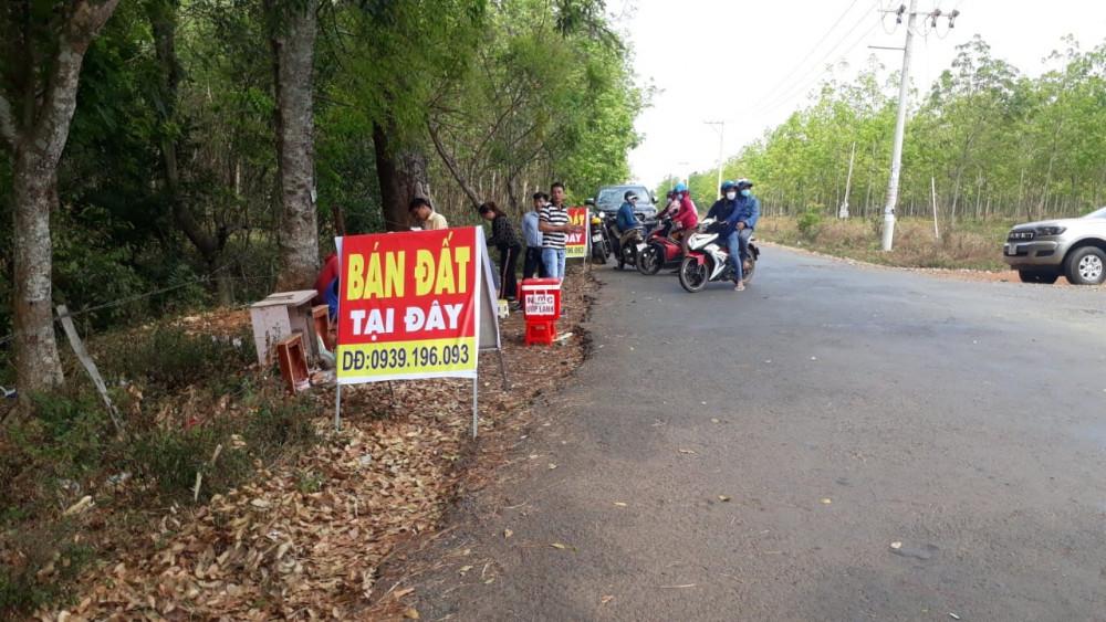 Chính quyền tại huyện Hớn Quản chỉ đạo xử lý nghiêm tình trạng lôi kéo bán đất