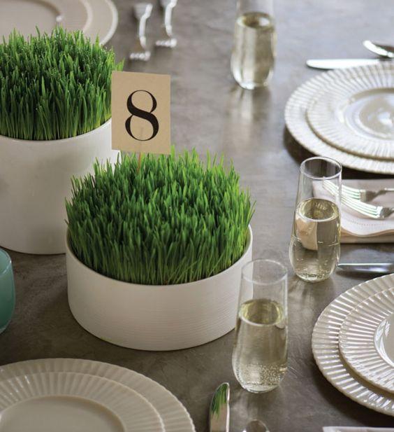 Hình 6.Những chậu lúa mì mơn mởn trong chậu trắng trơn đơn giản tạo điểm nhấn nổi bật ở trên bàn tiệc sự kiện.