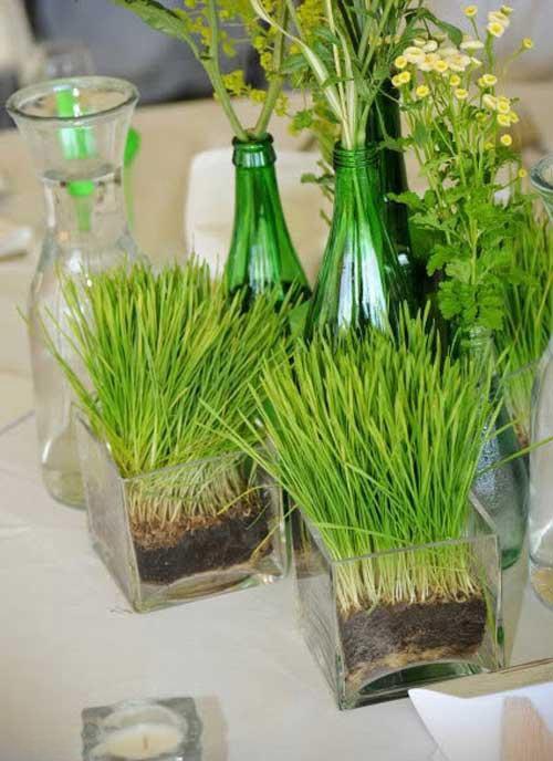 Hình 3.Gieo hạt giống cỏ lúa mì trong lọ vuông trong suốt cùng với những lọ thủy tinh cắm hoa dại đem lại bầu không khí thanh khiết, mát mẻ, mộc mạc và bình dị.
