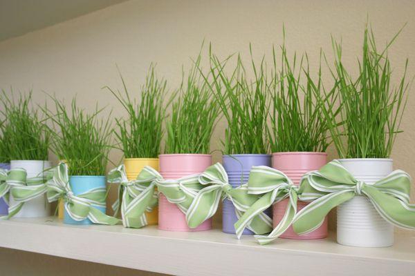 Hình 9. Những hộp thiếc màu pastel đa sắc với cỏ lúa mì non và nơ xanh phù hợp để trang trí ban công, bệ cửa sổ cho không gian ngọt ngào, tươi xinh.