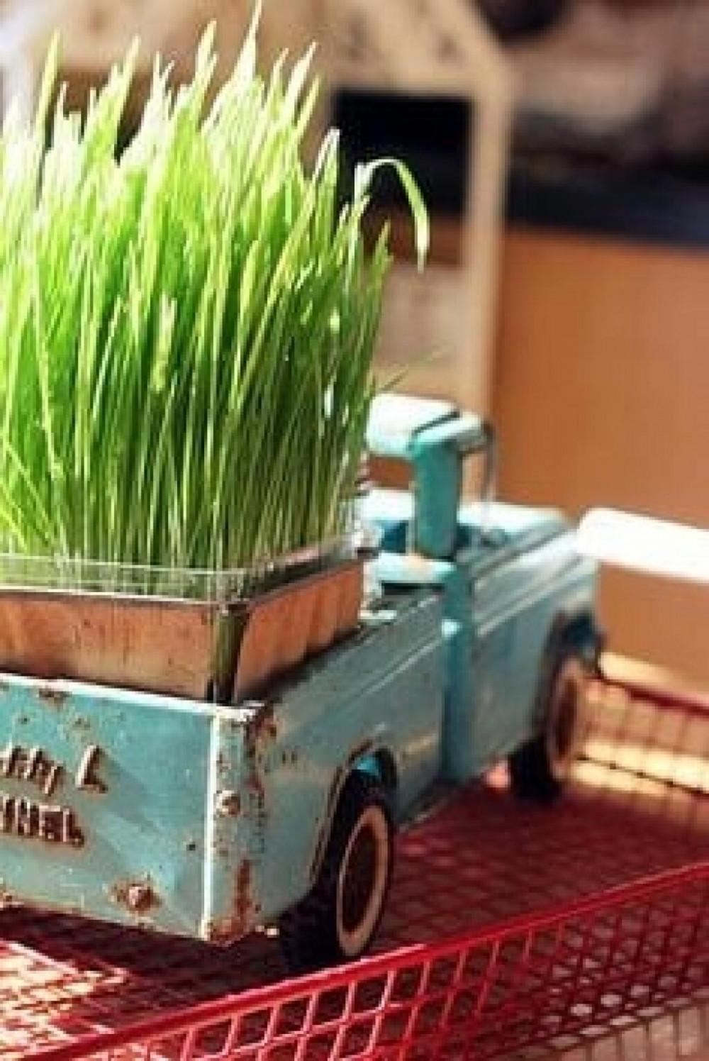 Hình 2. Xe tải cũ màu xanh chở đầy một cánh đồng cỏ lúa mì là ý tưởng trang trí mộc mạc, đáng yêu cho sức sống của mùa xuân ngay trên kệ sách hay bàn làm việc.