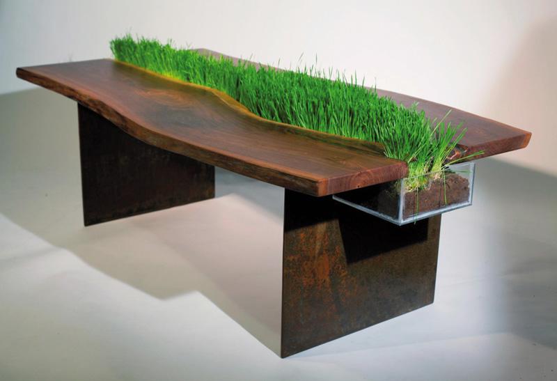 Một chiếc bàn gỗ mộc với cỏ lúa mì non trồng trung tâm tràn đầy sụ phá cách, thu hút.