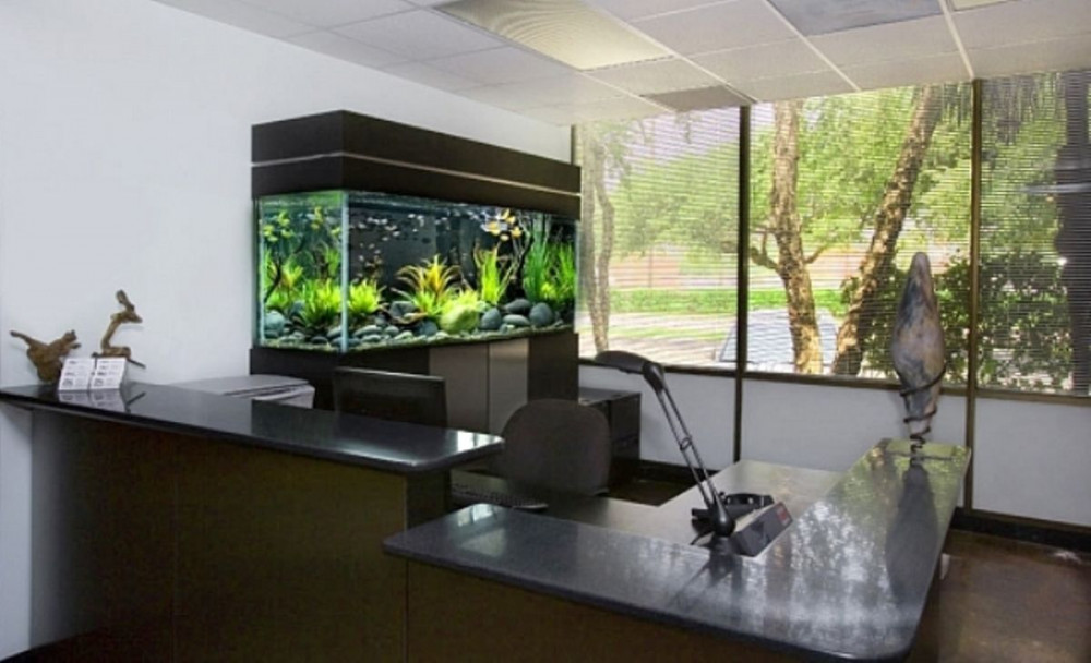 Hình 10.. Văn phòng làm việc với bể cá tạo điểm nhấn và thư giãn.