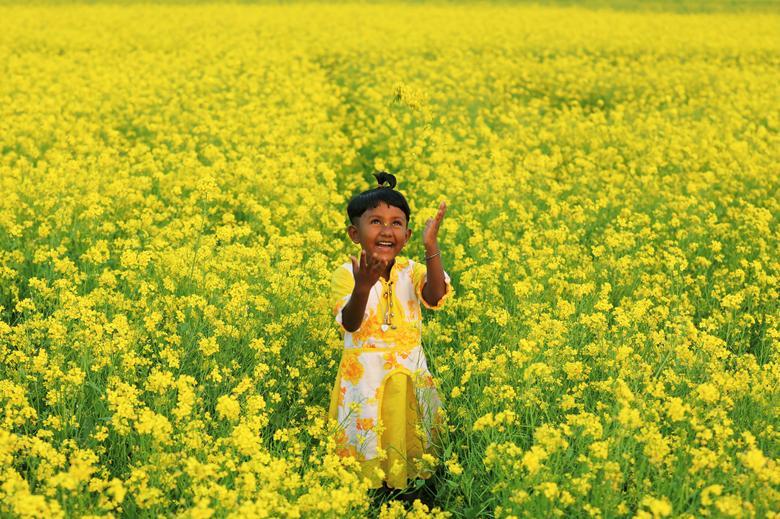 Một bé gái chơi trên cánh đồng hoa cải ở Munshiganj, Bangladesh ngày 8/1/2021