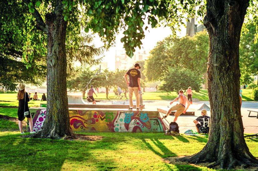 Người dân TP.Helsinki chơi đùa trong công viên ngập nắng - Ảnh: HEL.FI