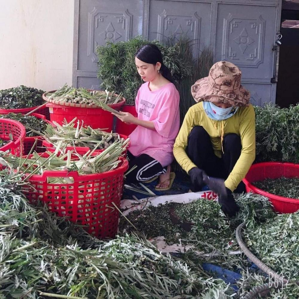 Tôi phát triển nông sản sạch, tạo việc làm cho người nghèo và thêm lựa chọn cho người tiêu dùng