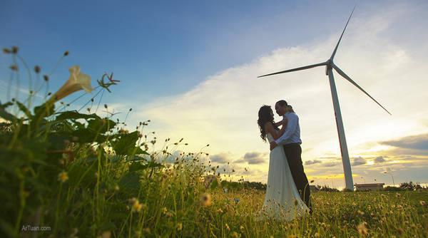 Đường đến những cánh quạt gió đẹp như một bức tranh.