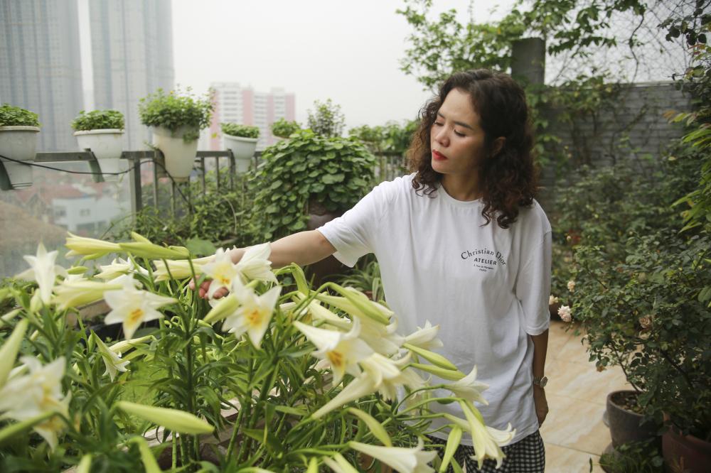 Những cành hoa loa kền trắng được chị Thúy chăm sóc rất kĩ lưỡng