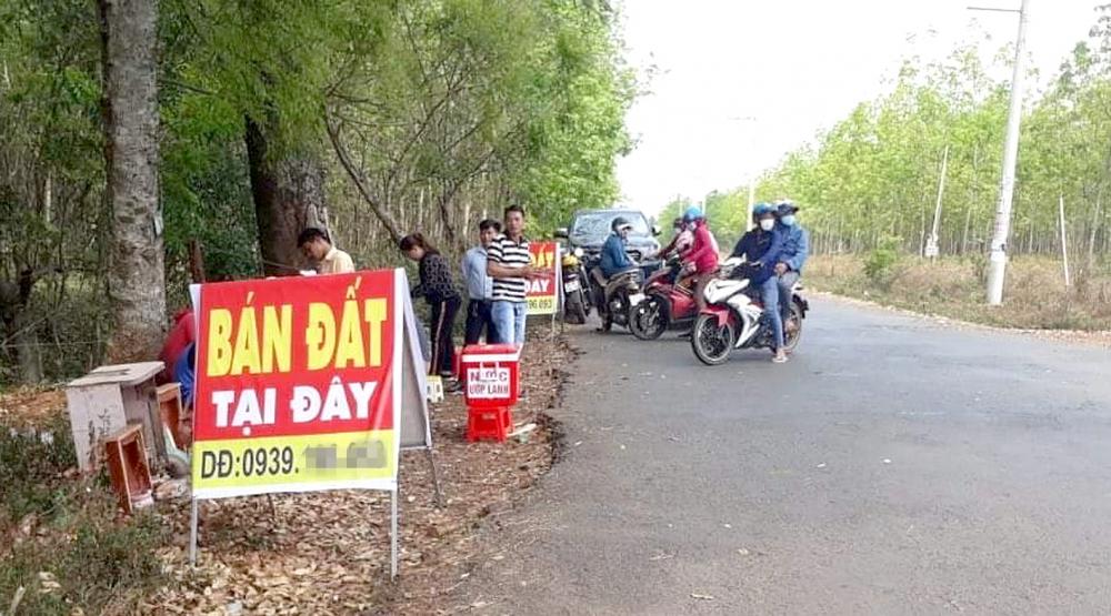 Một điểm giao dịch đất dã chiến trên một tuyến đường ở H.Hớn Quản, tỉnh Bình Phước - Ảnh: B.Trần