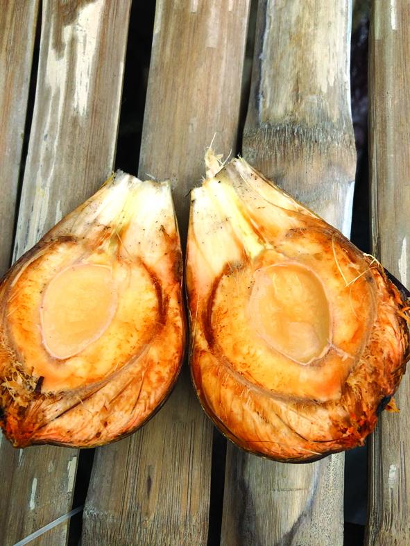 Đặc sản dừa nước ở rừng dừa Bảy Mẫu