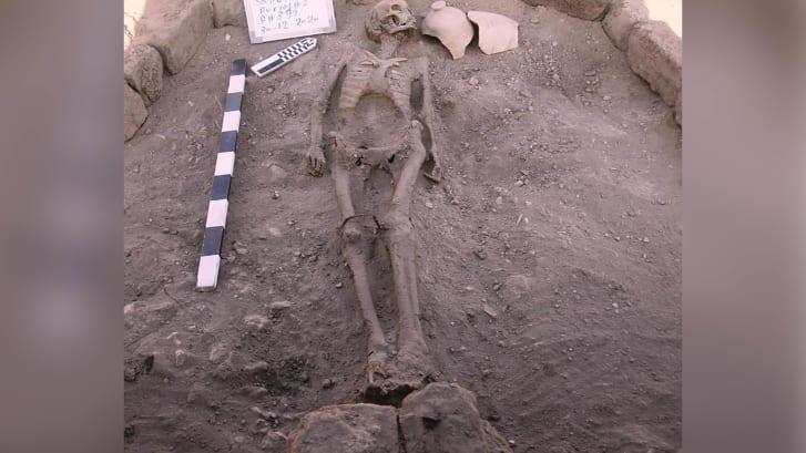 Một bộ xương người còn nguyên vẹn cũng được tìm thấy lần này - Ảnh: Zahi Hawass