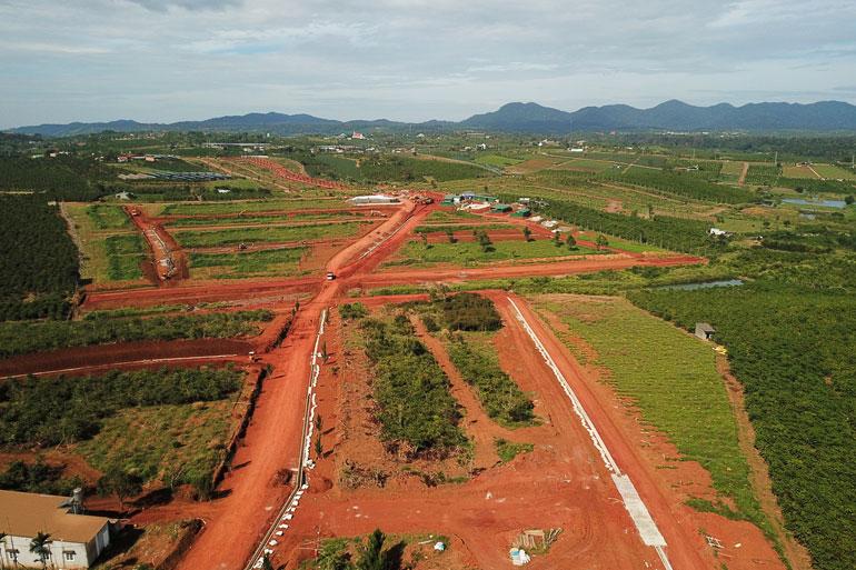 Đất đồi chè tại tỉnh Lâm Đồng cũng