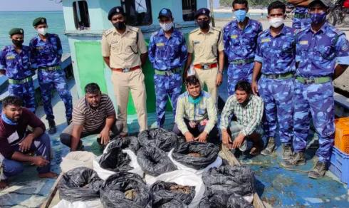 Lực lượng bảo vệ động vật hoang dã biển ở quần đảo Lakshadweep của Ấn Độ với vụ bắt giữ 486 con hải sâm chết vào tháng trước. Ảnh: Sở Lâm nghiệp Lakshadweep